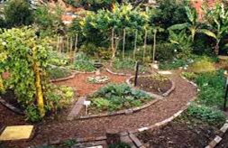 permaculture-customhomedesigns-2